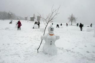 Бороться с таянием снега киевлянам помогут снеговики