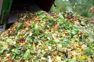 Сырье для компоста — пищевые отходы