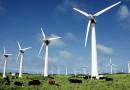 В Харьковской области германские инвесторы возведут ветропарк