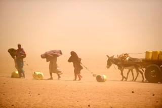 Климатическое изменение привело к гуманитарному бедствию