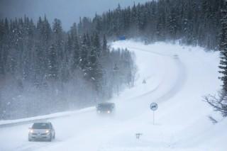 В центре России 8-9 марта прогнозируются 20-градусные морозы