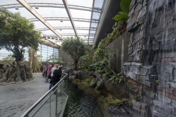 Крупнейший аквариум Европы откроется на днях в Дании