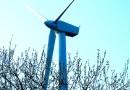 МТС построит на Ямале базовые сотовые станции, работающие от энергии ветра