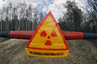 В Чернобыльской зоне отчуждения создадут заповедник