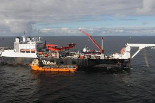 На экологический мониторинг газопровода «Северный поток» будет выделено 40 миллионов евро