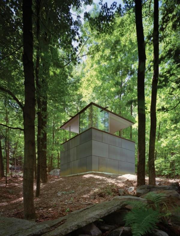Библиотека в лесу