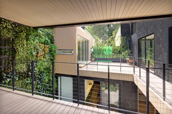 Дом с вертикальным садом из 4000 растений