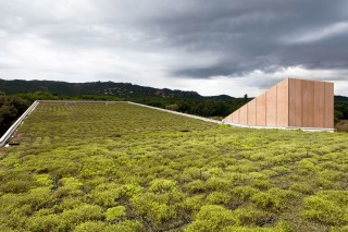 Культурный центр с роскошной «зеленой» крышей