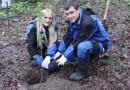 Сотрудники «Газпром социнвест» высадили в Сочи сотню саженцев редких деревьев