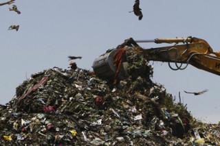 Росприроднадзор поспособствует утилизации отходов в Подмосковье