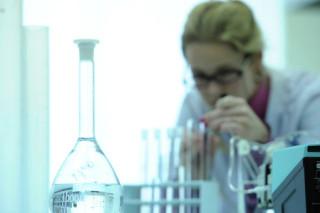 В процессе фотосинтеза присутствуют квантовые эффекты