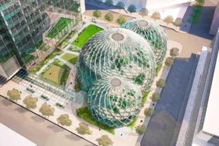 Новая штаб-квартира Amazon будет напоминать ботанический сад
