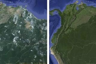 Международная экология