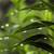Гигиенические нормы, относящиеся к основным факторам окружающей среды