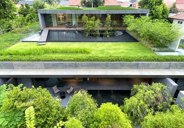 Ландшафтный дизайн соединяет два дома в единое пространство