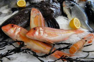 Морская рыба ест пластик и изобилует токсинами