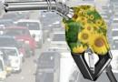Проблемы развития биоэнергетики в России
