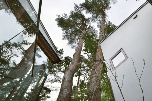 Гостевой дом в японском лесу