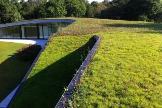 Загородная гостиница в Испании с «живой» крышей
