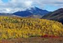Камчатские природные парки достигли совершеннолетия
