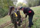 В Тюмени стартовал фестиваль школьных лесничеств
