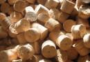 Японцы вложат миллиард рублей в переработку леса в Бурятии