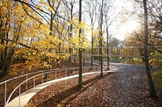 Прогулочная дорожка в таллиннском парке