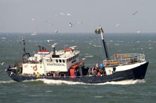 В Дании построят предприятие, производящее судовое биотопливо