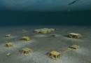 К подводной добыче нефти привлекут энергосберегабщие технологии
