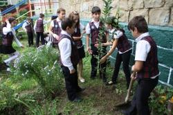 Школьники вместе с лесниками высадили в Мессажае кустарники
