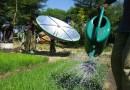 В компании Futurepump разработали оросительную систему на солнечной энергии
