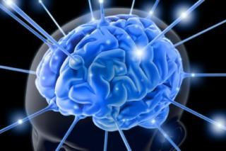 Человеческий организм может вырабатывать наркотики сам