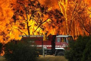 Учения военных привели к реальным пожарам в Австралии