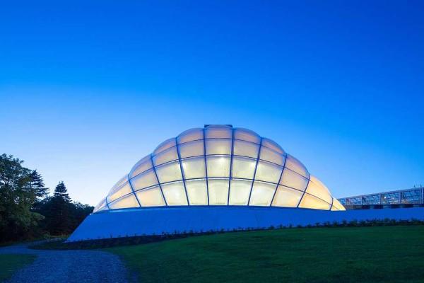 Теплица в ботаническому саду Университета Орхуса