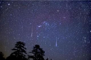 Санкт-Петербург и все северное полушарие наблюдали звездопад