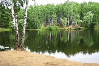 Проблемы Российской экологической политики. Часть 2