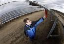 Швейцарские эксперты считают, что время угольных и газовых электростанций уходит в прошлое