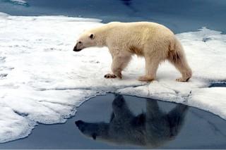 Глобальное потепление не остановить
