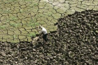 В ближайшие десятилетия жить станет хуже, голоднее и страшнее
