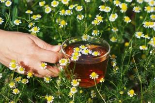 Чай снижает вредное воздействие никотина на организм