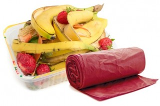 Эксперты прогнозируют стремительный рост рынка биопластика