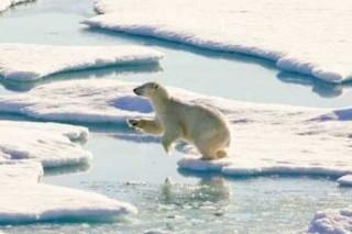 Лед в Антарктиде тает быстрее, чем ожидали