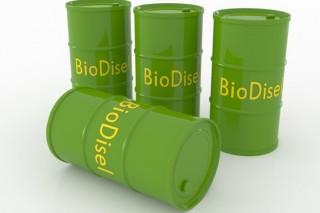 В Аргентине недовольны кабальными ввозными пошлинами на биотопливо, установленными Евросоюзом