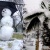 Россия и Америка: аномальные тепло и холод взаимосвязаны