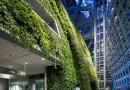 «Зелёный» бизнес – в чём выгода для предприятия?