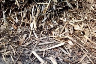 Строительство электростанции на древесных отходах в Коми, одновременно решит экологическую и энергетическую проблемы