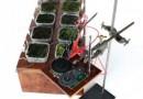Moss FM – первая радиостанция, функционирующая на биологических солнечных панелях