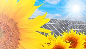 В Украине подвели итоги развития альтернативной энергетики в 2013 году