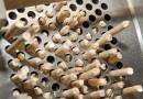 В Ульяновской области планируют создать «пеллетный» кластер