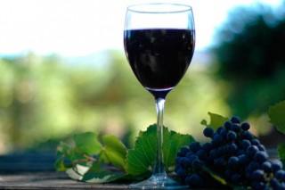 Сухое красное вино может заменить походы в спортзал, считают американские ученые